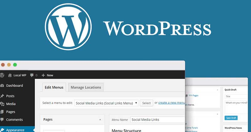 website-wordpress-pic